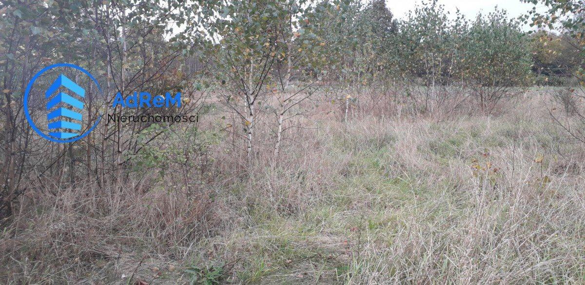 Działka siedliskowa na sprzedaż Baciuty  3890m2 Foto 1