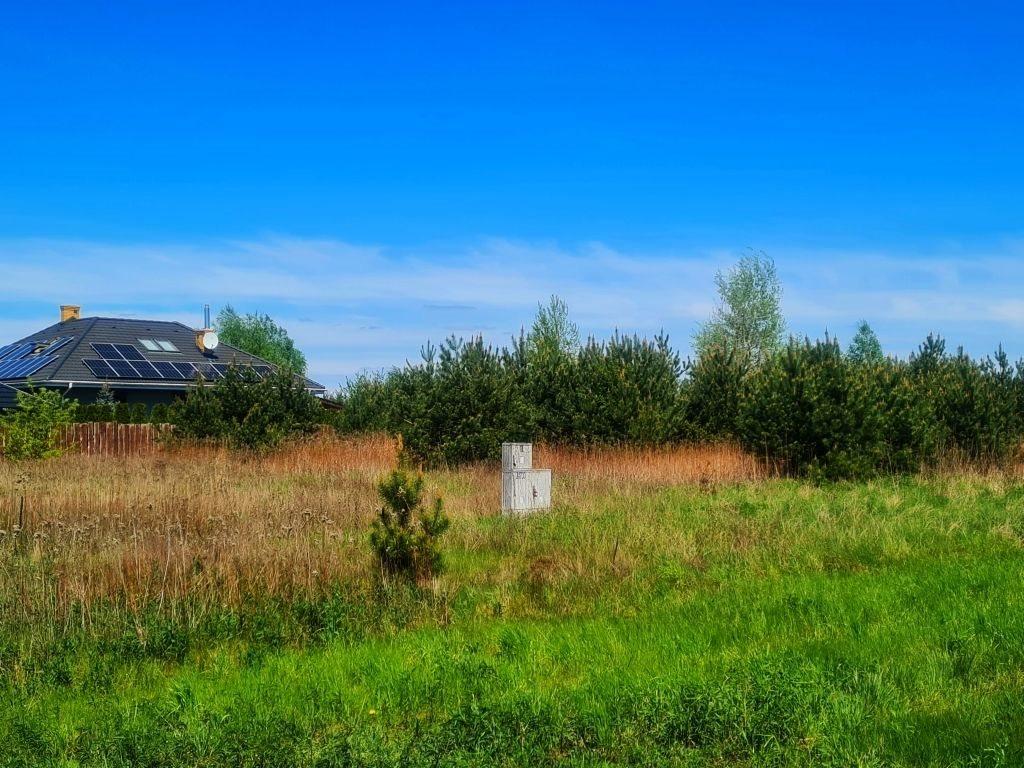Działka rolna na sprzedaż Dębe, Dębe  4467m2 Foto 2