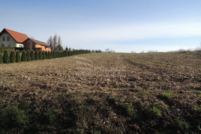 Działka budowlana na sprzedaż Stary Krasieniec  1500m2 Foto 3