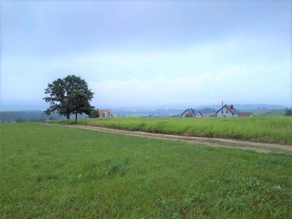 Działka budowlana na sprzedaż Pępice  1238m2 Foto 2