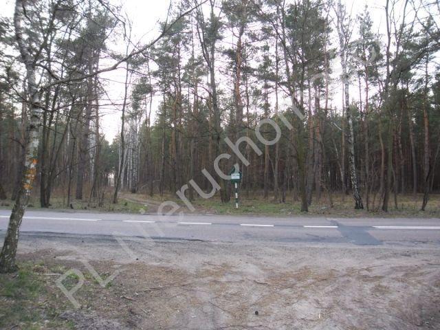 Działka leśna na sprzedaż Dobre  4200m2 Foto 1