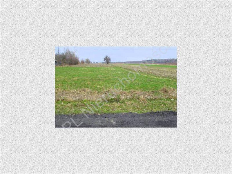 Działka rolna na sprzedaż Tyborów  4500m2 Foto 1