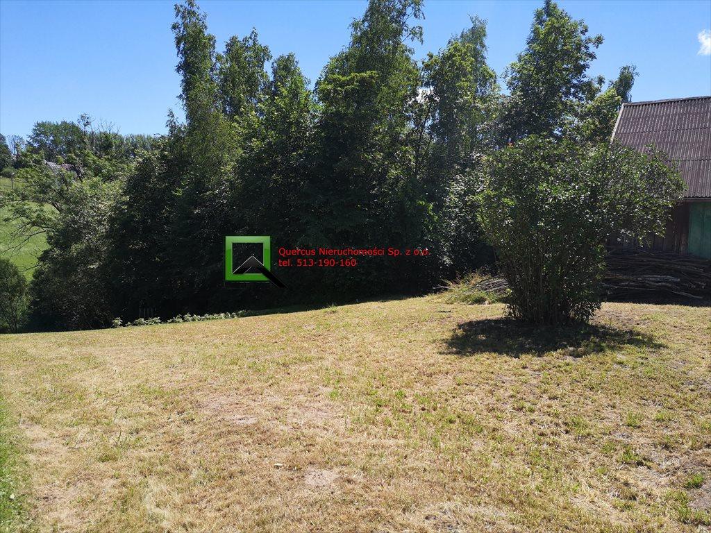 Działka budowlana na sprzedaż Rzeszotary  3600m2 Foto 4