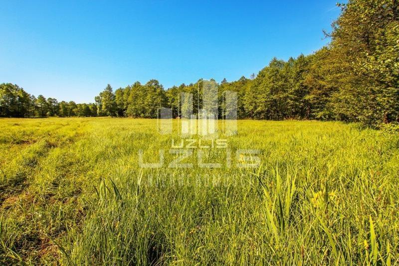 Działka rolna na sprzedaż Czarnocin  5900m2 Foto 8
