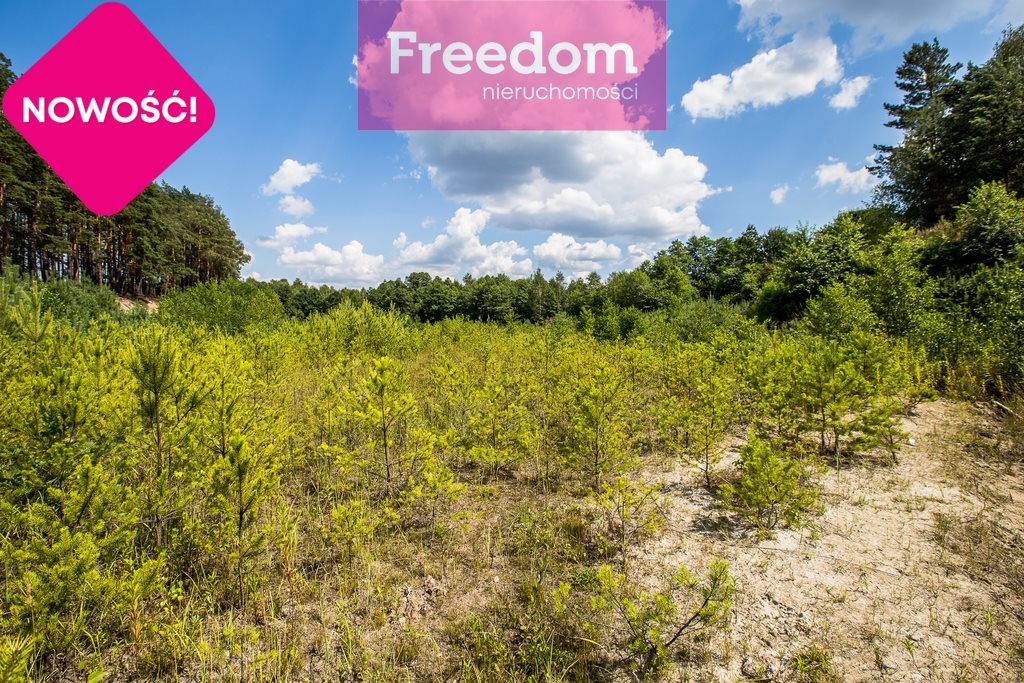 Działka leśna na sprzedaż Zielonka  38097m2 Foto 7