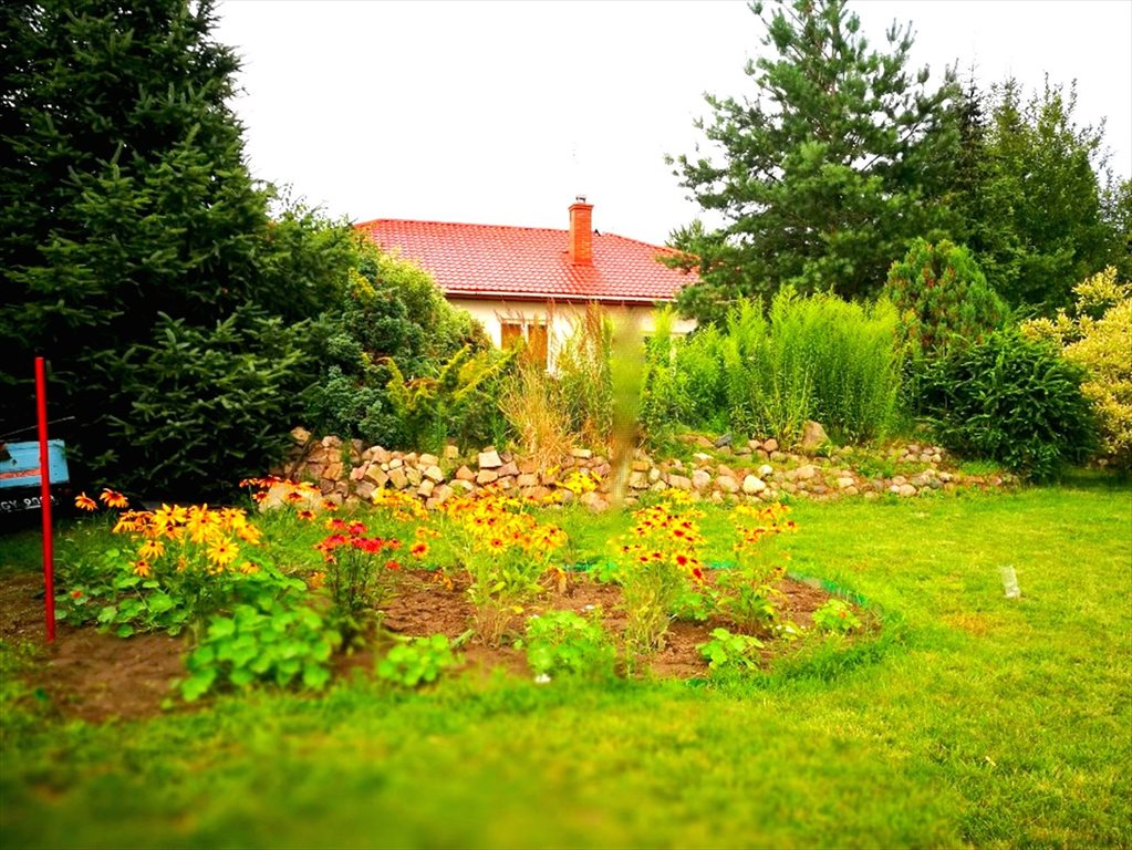 Dom na sprzedaż Łoś  139m2 Foto 2