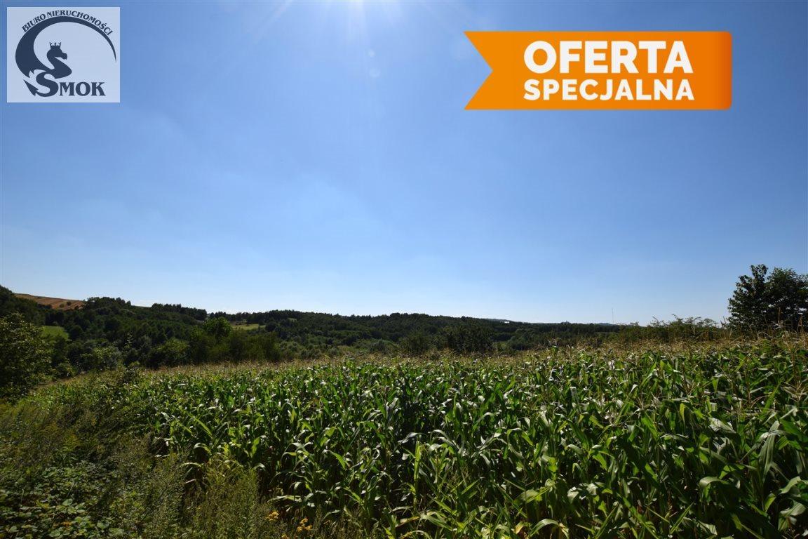 Działka rolna na sprzedaż Bodzanów  4400m2 Foto 2