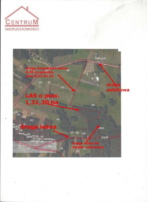 Działka leśna na sprzedaż Brzozowy Kąt  15375m2 Foto 4