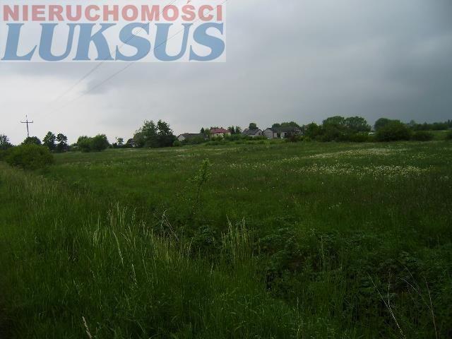Działka rolna na sprzedaż Prażmów, Prazmów  16000m2 Foto 2