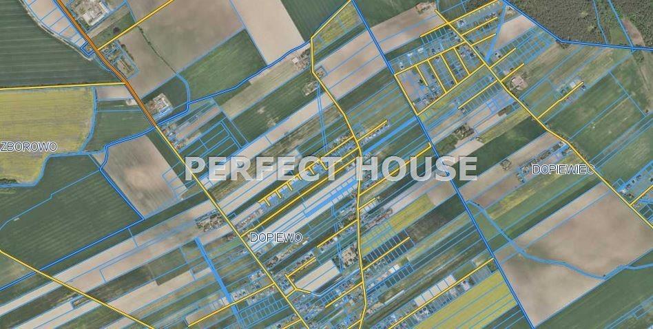 Działka budowlana na sprzedaż Dopiewo  9256m2 Foto 3