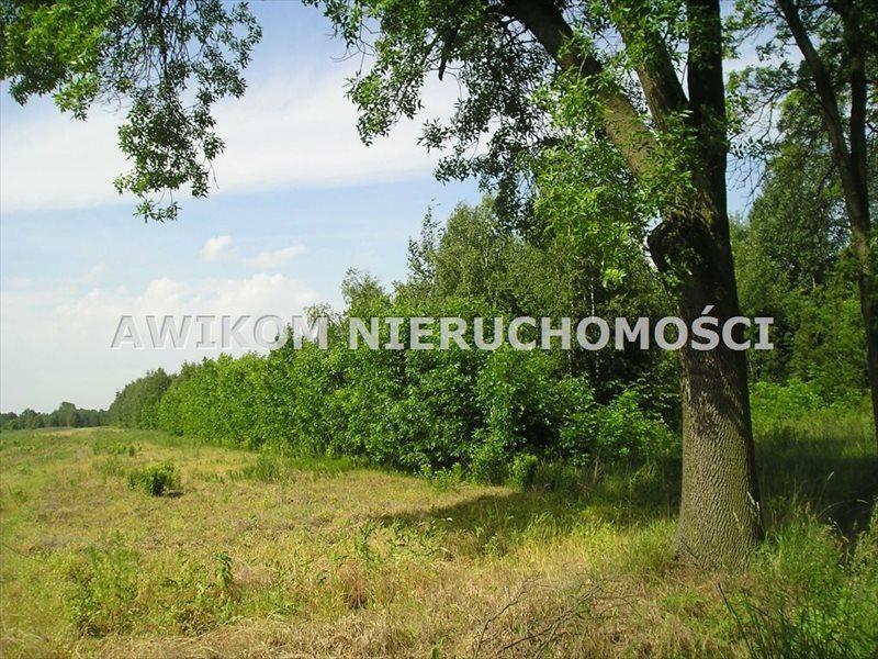 Działka budowlana na sprzedaż Skierniewice, Mokra Lewa  22700m2 Foto 1