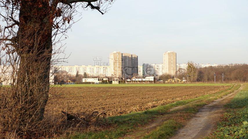 Działka inwestycyjna na sprzedaż Poznań, Nowe Miasto, Żegrze, Sarbinowska  12562m2 Foto 14