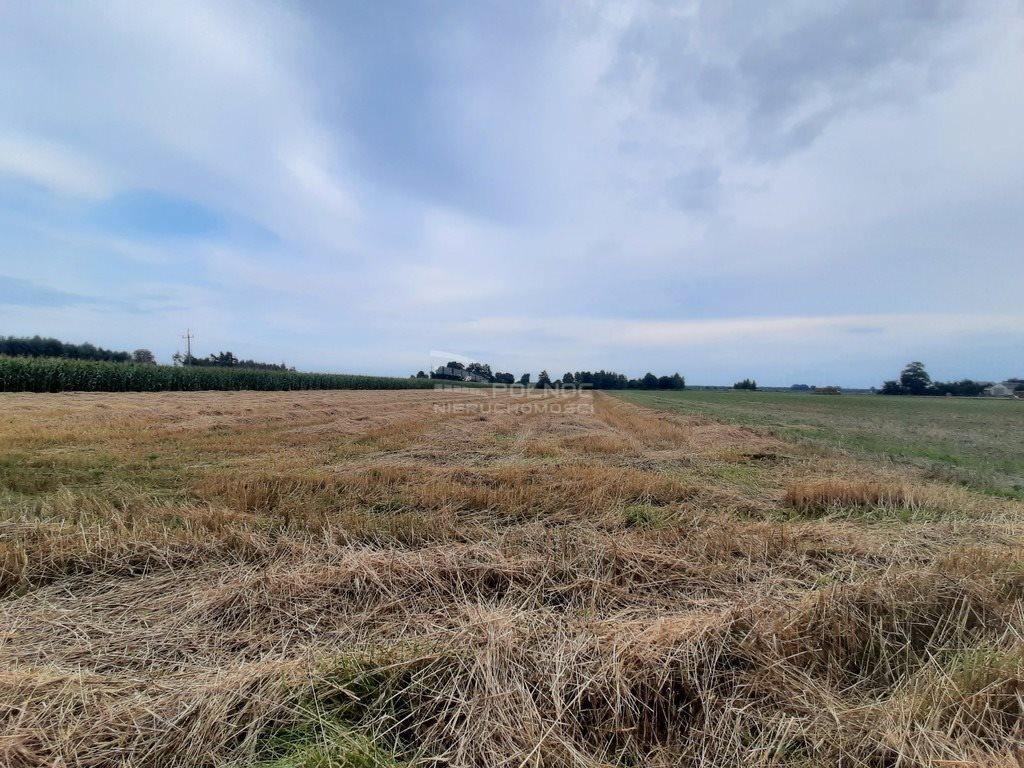 Działka rolna na sprzedaż Żurawieniec  22500m2 Foto 3