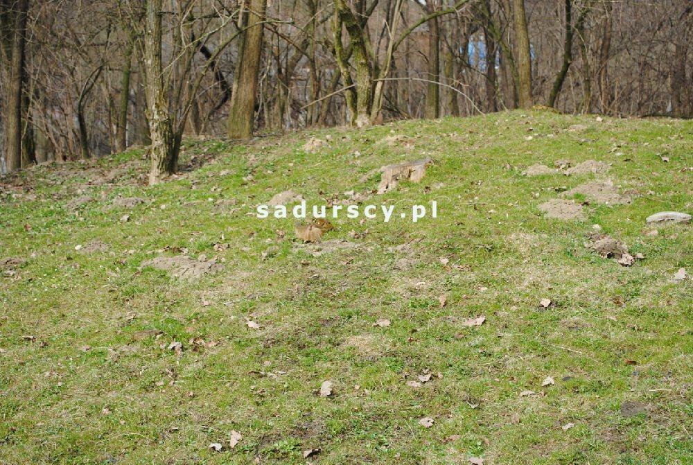 Działka leśna na sprzedaż Malkowice  4800m2 Foto 3