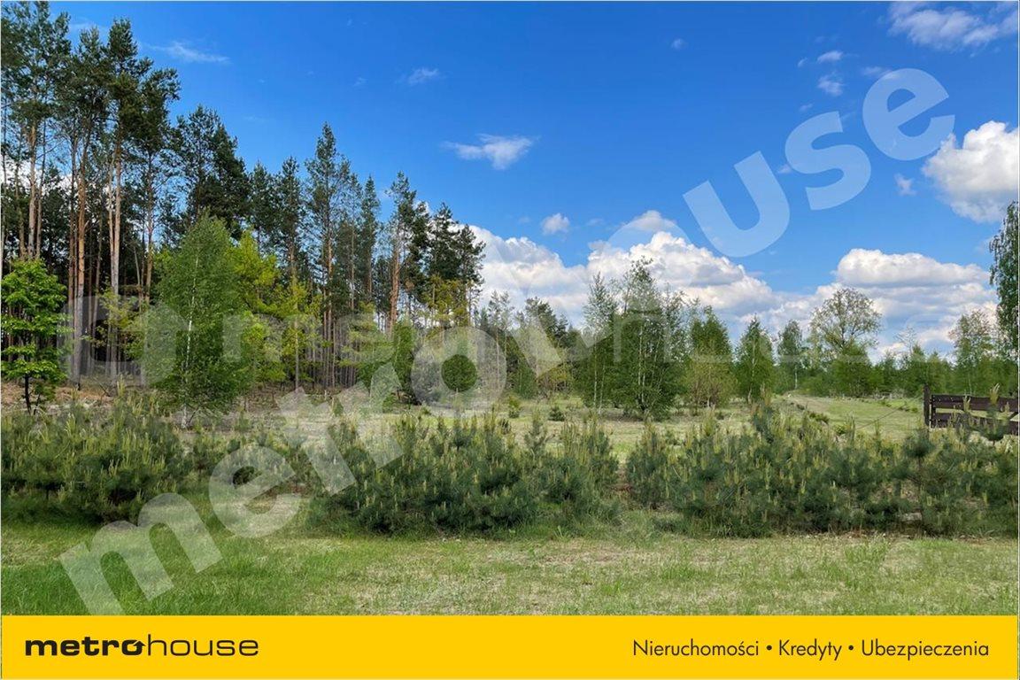 Działka leśna na sprzedaż Chełsty, Różan  80000m2 Foto 4