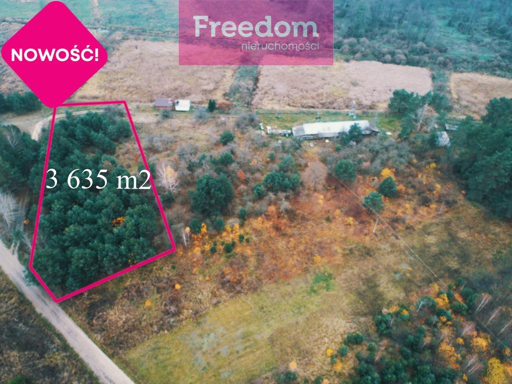 Działka siedliskowa na sprzedaż Strabla  3600m2 Foto 3