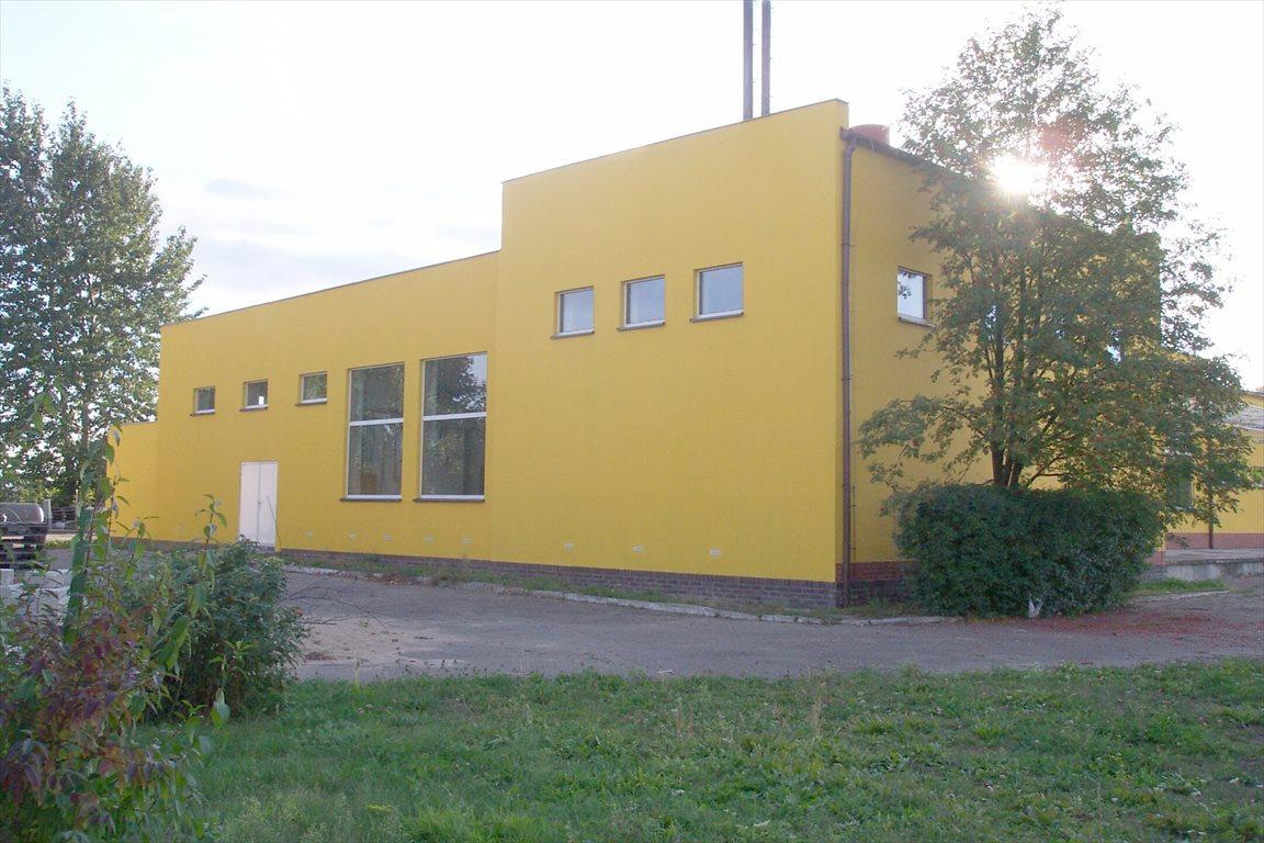 Lokal użytkowy na sprzedaż Rogoźno, Rolna 7  1886m2 Foto 1