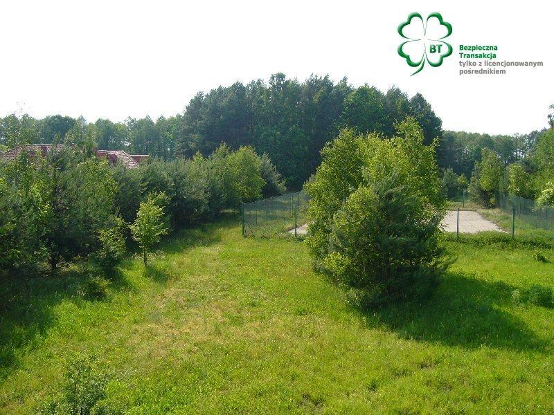 Dom na sprzedaż Trzcianka, Trzcianka okolice  890m2 Foto 7