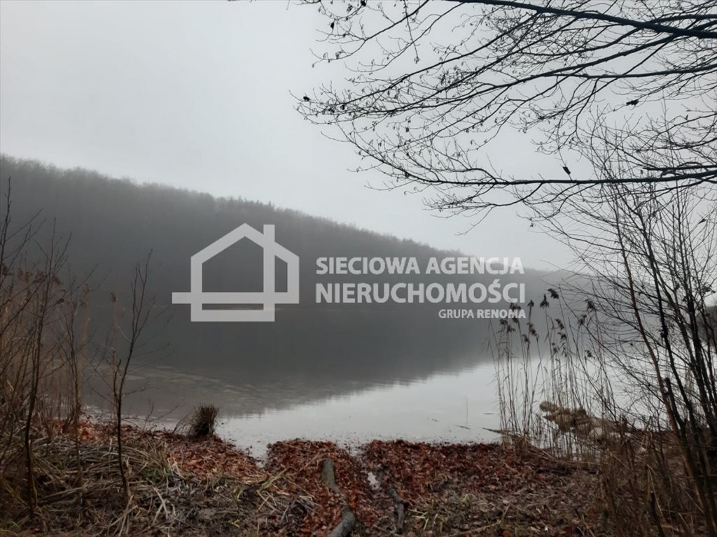 Działka leśna na sprzedaż Nowa Karczma, Kamiony  2605m2 Foto 5