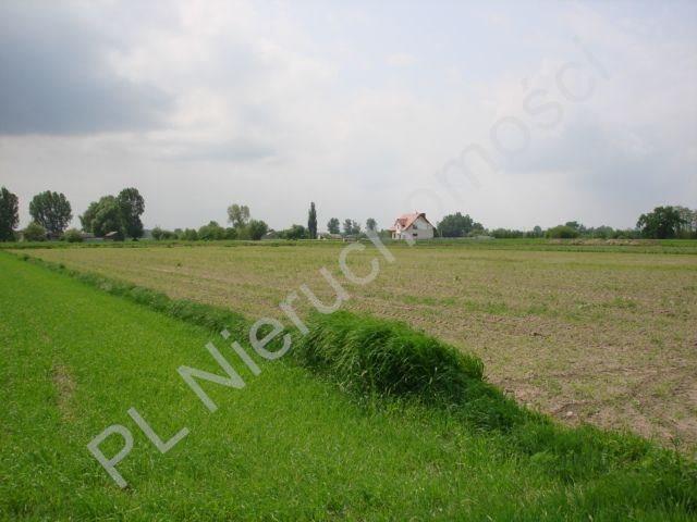 Działka rolna na sprzedaż Holendry Baranowskie  15700m2 Foto 1