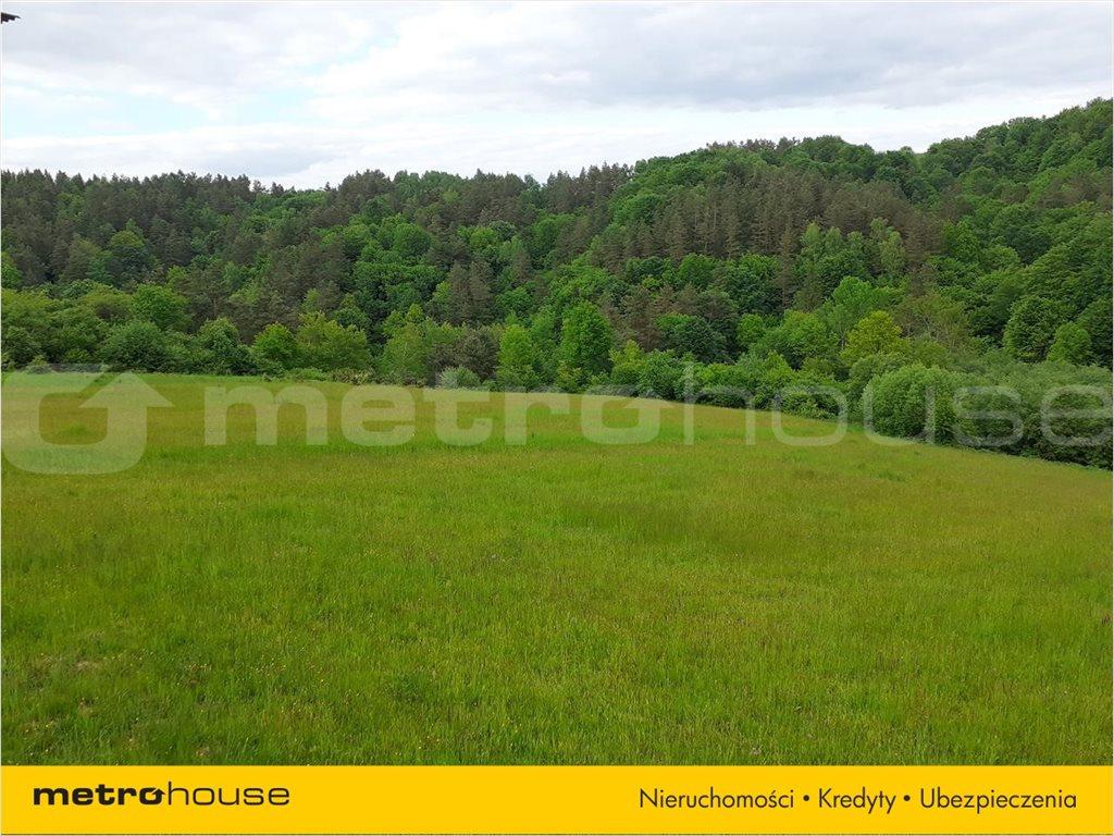 Działka rolna na sprzedaż Średnia Wieś, Lesko  10300m2 Foto 3