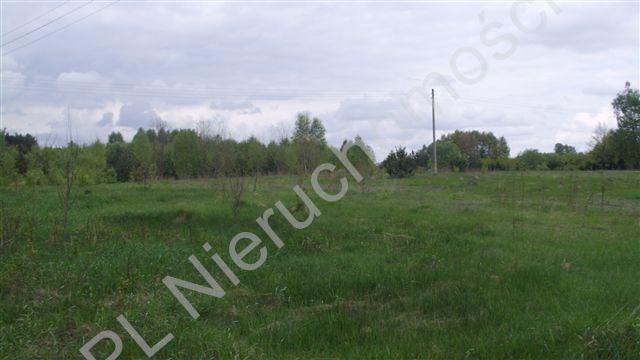 Działka rolna na sprzedaż Mszczonów  3600m2 Foto 3