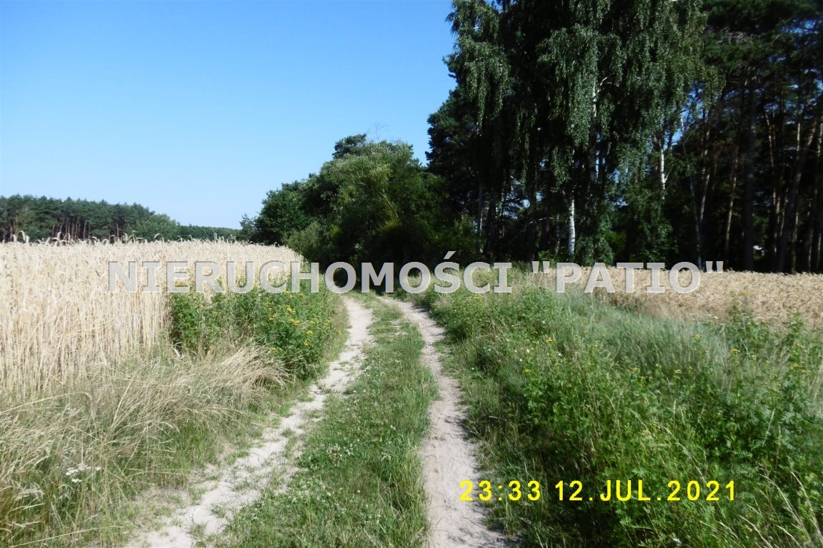 Działka leśna na sprzedaż Kórnik, Radzewo, Dworzyska  4700m2 Foto 5