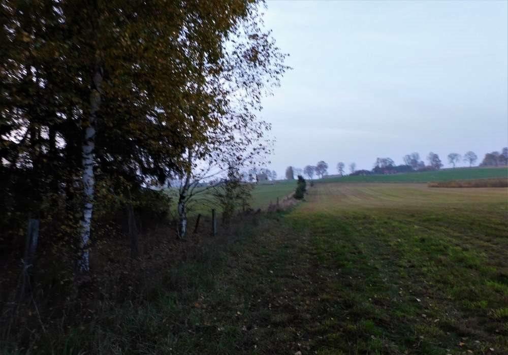 Działka rolna na sprzedaż Orzyny  3300m2 Foto 5