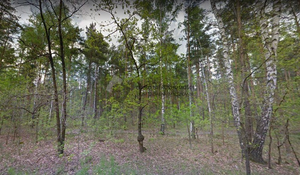 Działka leśna na sprzedaż Warszawa, Wawer, Anin  9616m2 Foto 3
