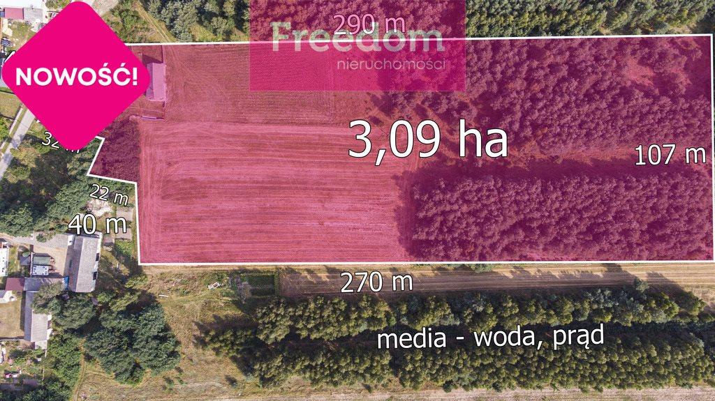 Działka rolna na sprzedaż Ożegów, Piaskowa  30026m2 Foto 7