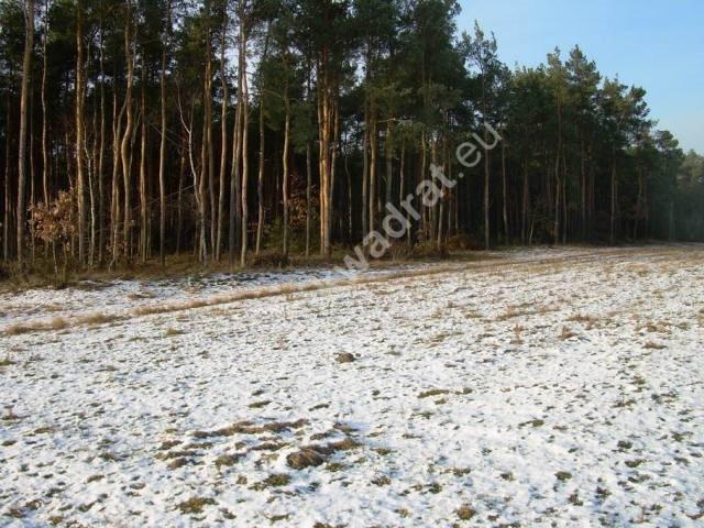 Działka rolna na sprzedaż Stanisławów  3000m2 Foto 1