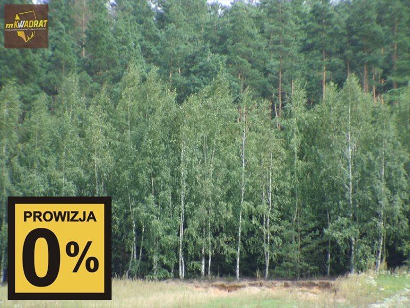 Działka leśna na sprzedaż Wiśniowo Ełckie  10000m2 Foto 1
