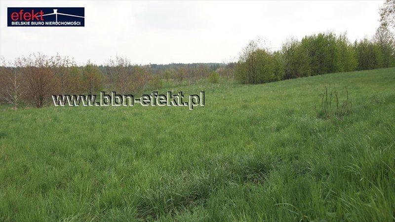 Działka inwestycyjna na sprzedaż Bujaków  1343m2 Foto 3