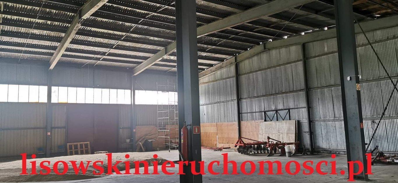 Działka przemysłowo-handlowa na sprzedaż Dąbrówka Wielka  79240m2 Foto 3