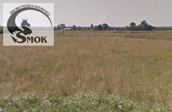 Działka rolna na sprzedaż Zabierzów Bocheński  5900m2 Foto 1