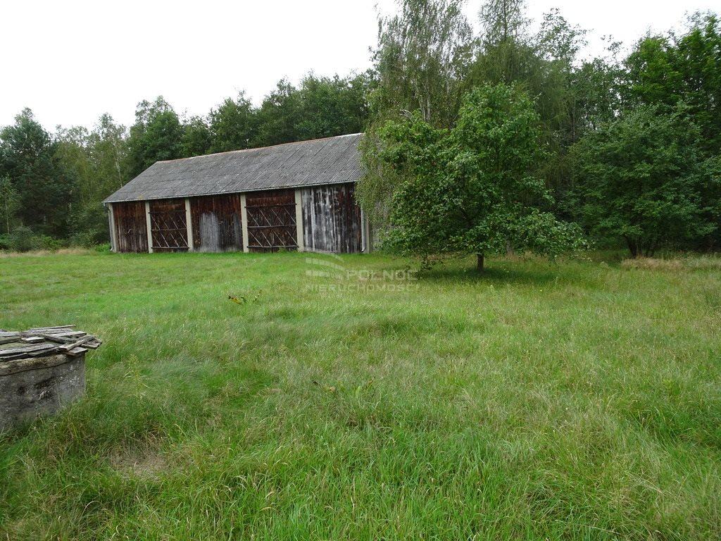 Dom na sprzedaż Wólka Kościeniewicka  90m2 Foto 8