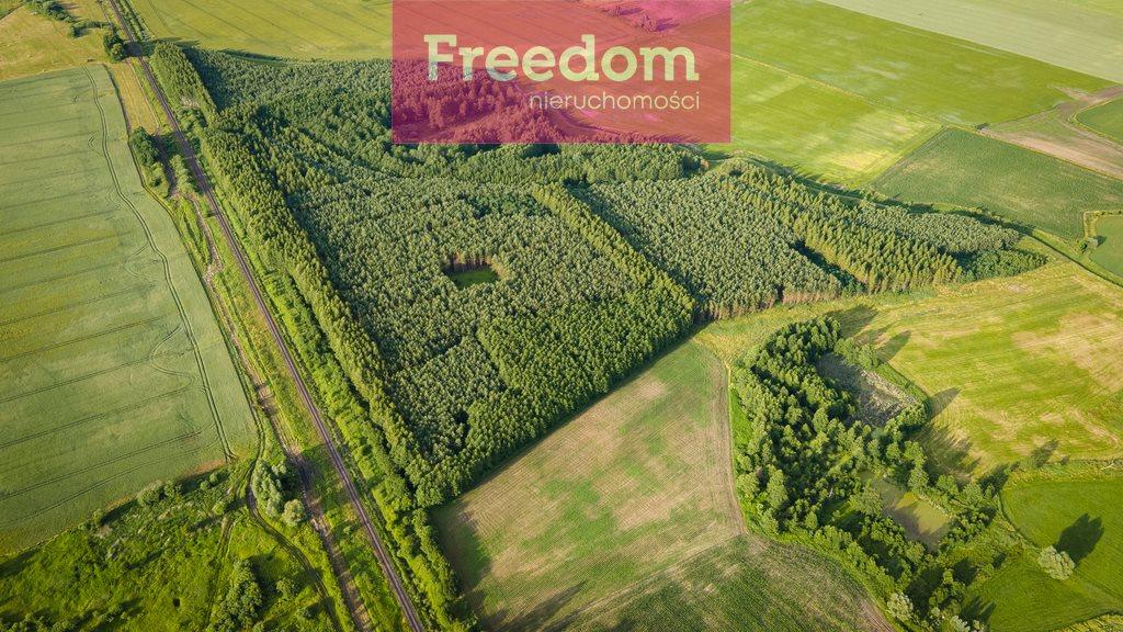 Działka leśna na sprzedaż Parys  205000m2 Foto 8