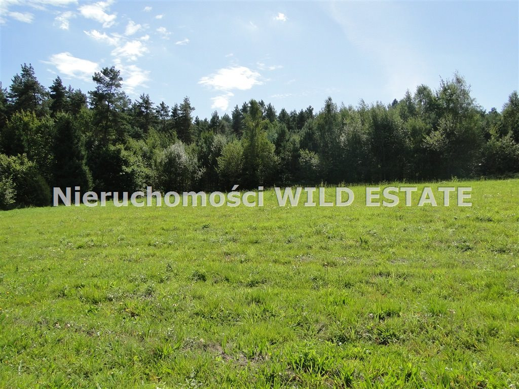 Działka rolna na sprzedaż Solina, Berezka  9400m2 Foto 2