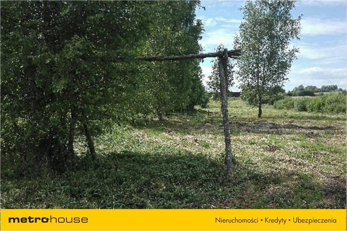 Działka rolna na sprzedaż Pierwągi, Jeziorany  5000m2 Foto 3