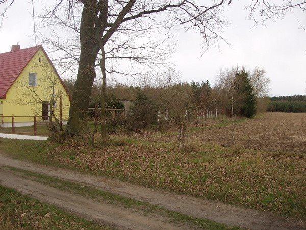 Działka budowlana na sprzedaż Krzywice  3000m2 Foto 4