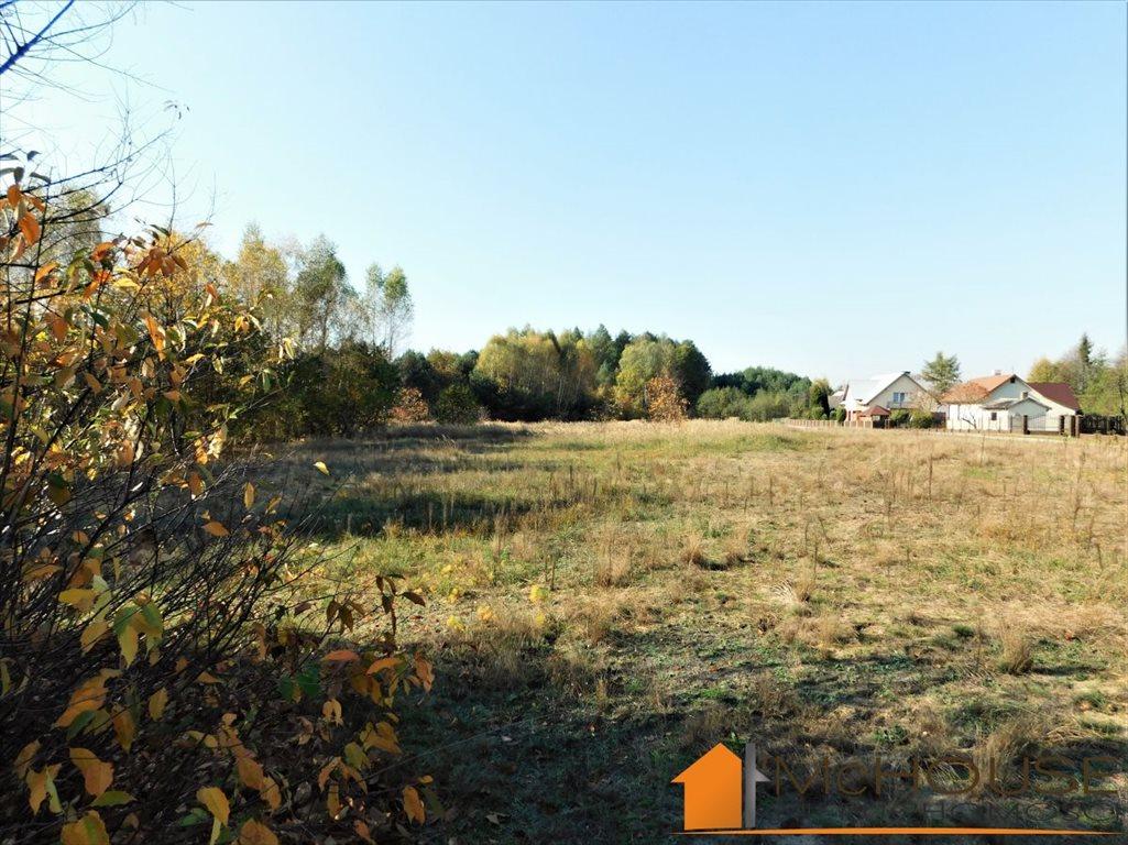 Działka rolna na sprzedaż Huta Komorowska, Huta Komorowska  5350m2 Foto 4