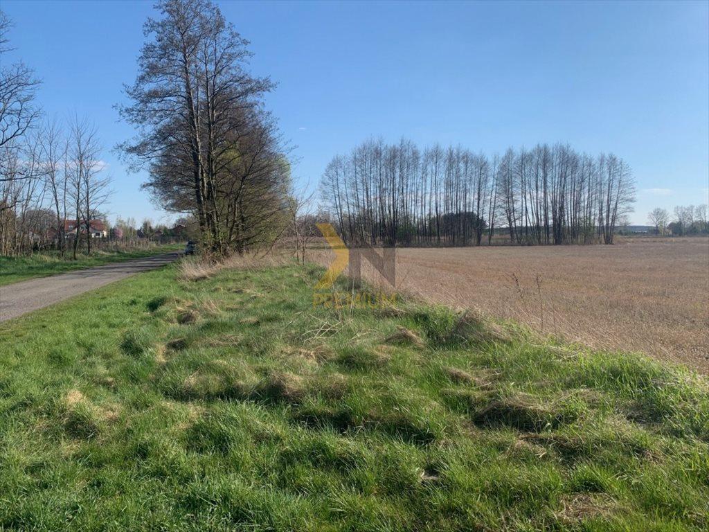 Działka rolna na sprzedaż Chrząstawa Wielka, Młyńska  22700m2 Foto 4