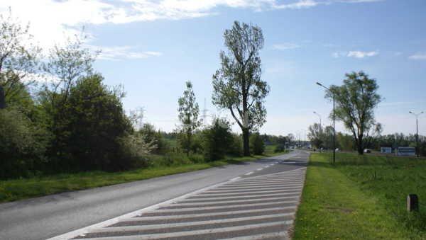 Działka rolna na sprzedaż Polkowice, Energetyków  11129m2 Foto 6