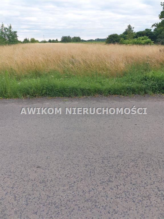 Działka inwestycyjna na sprzedaż Grodzisk Mazowiecki  150000m2 Foto 2