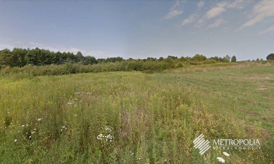 Działka rolna na sprzedaż Dąbrowa Szlachecka  5110m2 Foto 1
