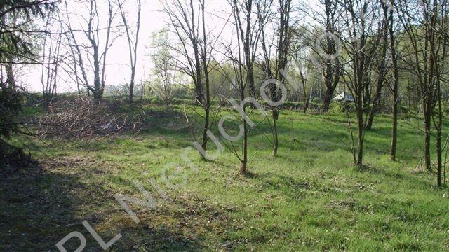 Działka rolna na sprzedaż Badów Górny  1781m2 Foto 1