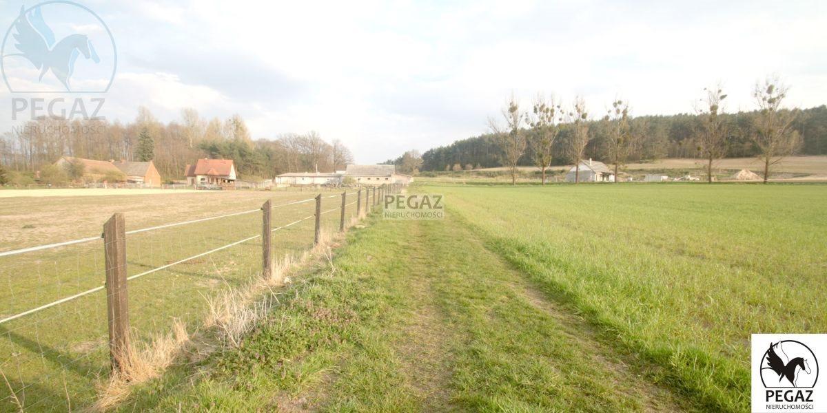 Działka rolna na sprzedaż Milcz, Holna / Zajęcza  6175m2 Foto 8