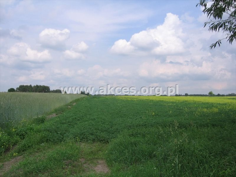 Działka rolna na sprzedaż Przęsławice  14715m2 Foto 1