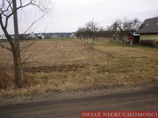 Działka budowlana na sprzedaż Kotowice  2000m2 Foto 5