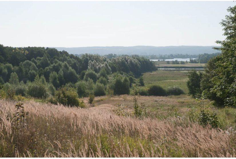 Działka rolna na sprzedaż Kurów  116958m2 Foto 1